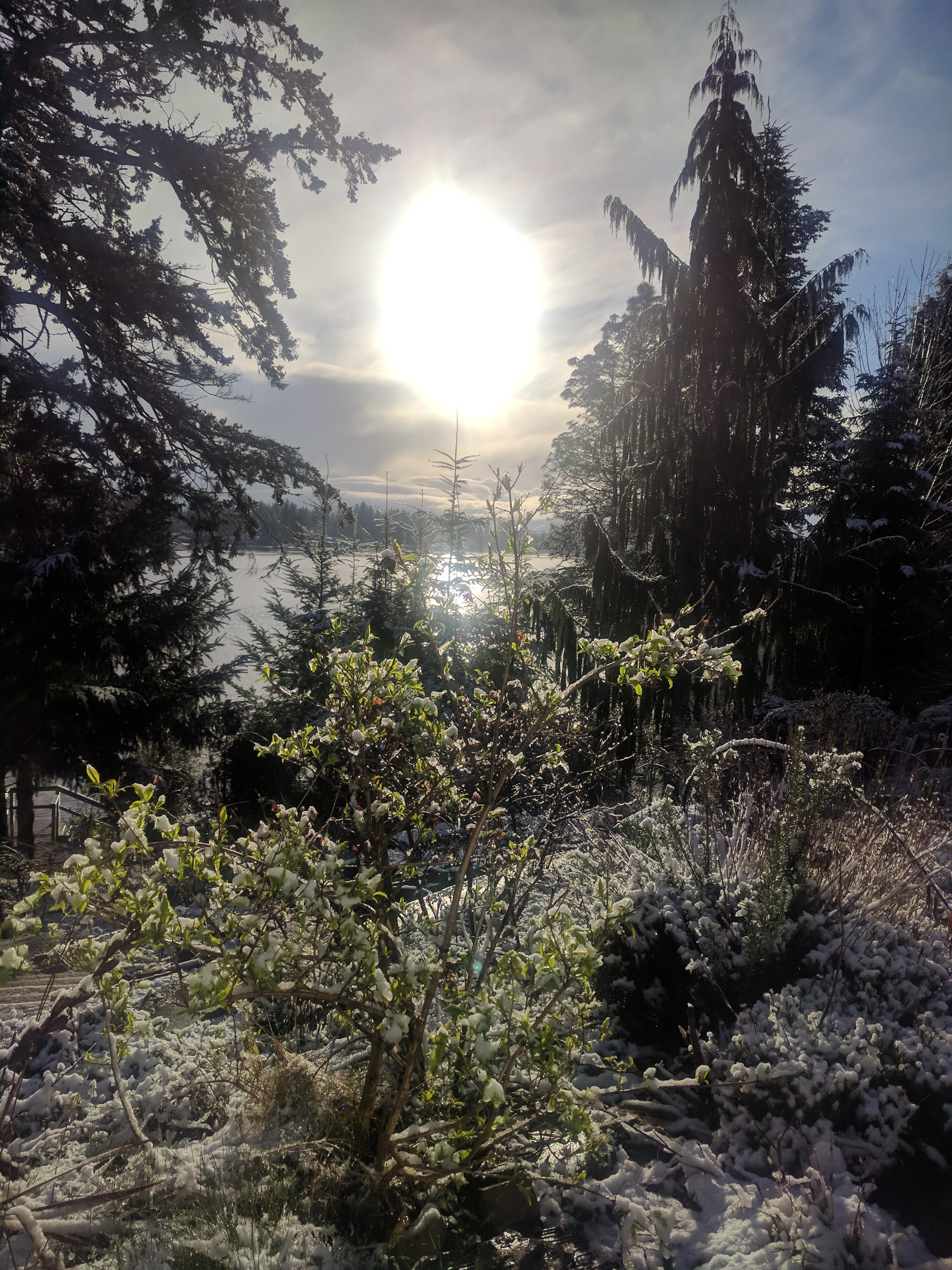 Woke up to snow.